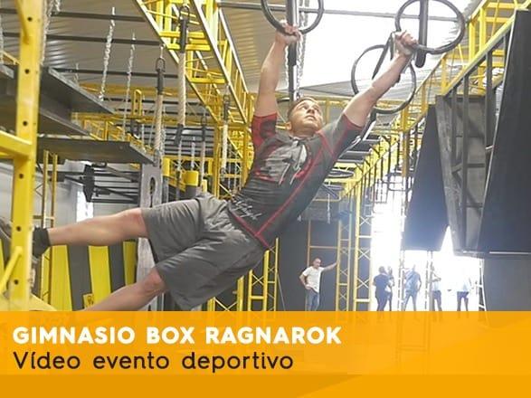 Gimnasio Box Ragnarok